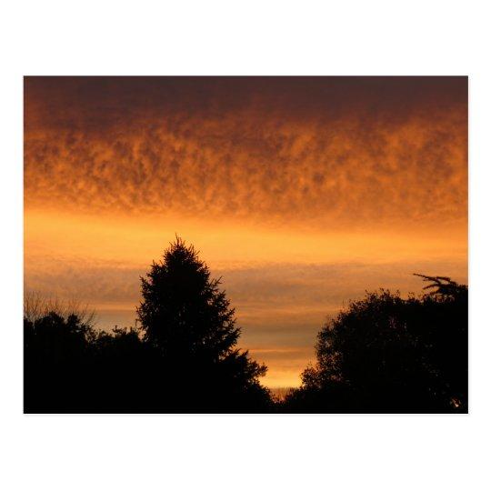 Beautiful Sunrise Postcards