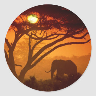 Beautiful Sunset Elephant Classic Round Sticker