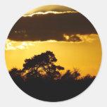 beautiful sunset sticker