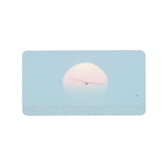 Beautiful Sunset: Virginia Beach, Virginia Label