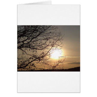 Beautiful sunset with branchs greeting card