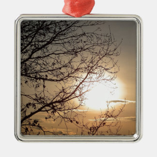 Beautiful sunset with branchs Silver-Colored square decoration