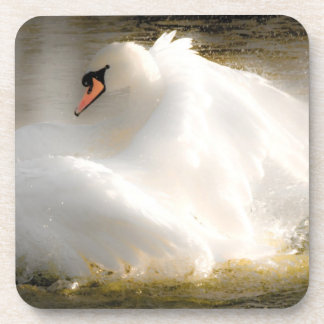 Beautiful Swan Cork Coasters