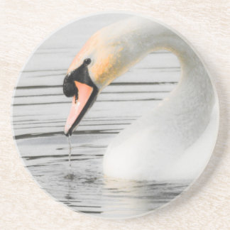 Beautiful Swan Drink Coaster