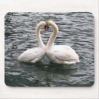 Beautiful swan pair mousepads