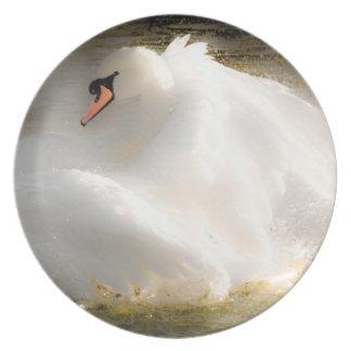 Beautiful Swan Plate