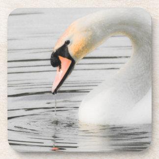 Beautiful Swan Set of 6 Coasters