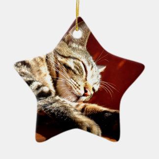 Beautiful tabby cat christmas ornament
