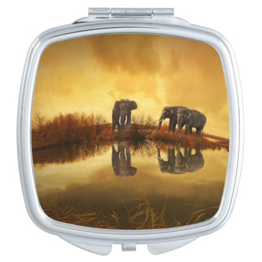 Beautiful Thailand Elephants Compact Mirror
