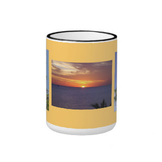 Beautiful Three-Image Florida Gift Mug