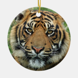 Beautiful Tiger Christmas Ornament