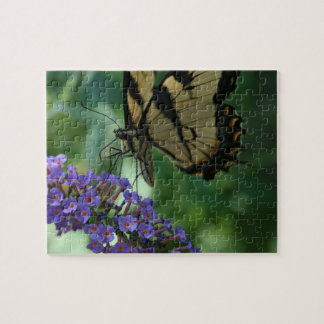Beautiful Tiger Swallowtail Butterfly on Flower Jigsaw Puzzle