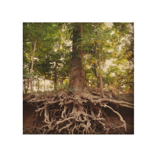 Beautiful Tree and Roots Wood Wall Art