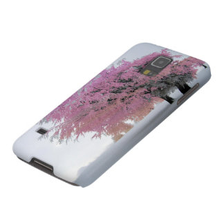 Beautiful Tree Pink Snow Scene.Samsung Galaxy Galaxy S5 Covers