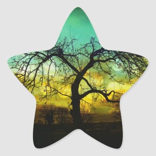 Beautiful Tree Silhouette at Sunset Ombre Aqua Star Stickers
