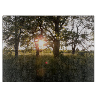 Beautiful Trees At Dusk Photo Cutting Boards