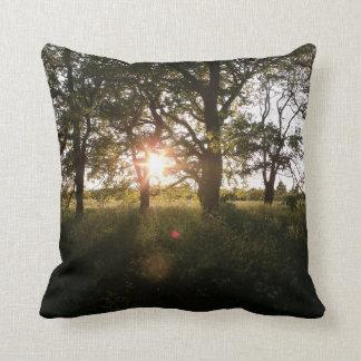 Beautiful Trees At Dusk Photo Throw Cushions