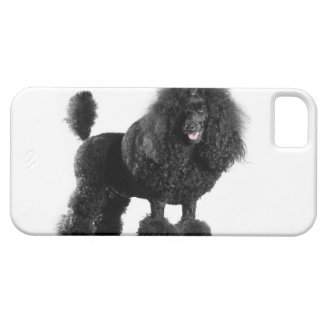 Beautiful, trimmed, black, complete poodle body case for the iPhone 5