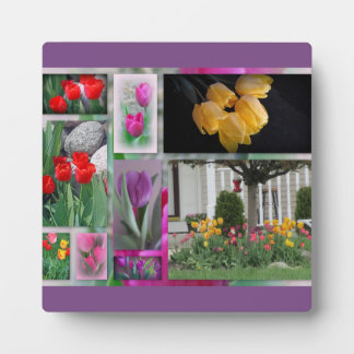 Beautiful Tulips Collage Plaque