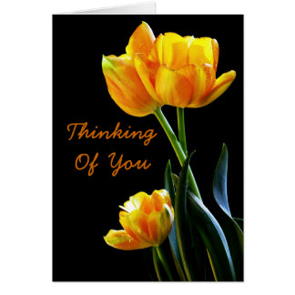 Beautiful Tulips Thinking Of You Greeting Card