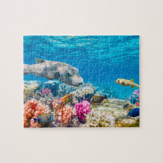beautiful underwater fish world, wather shower cur jigsaw puzzle