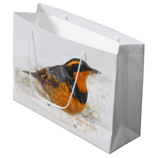 Beautiful Varied Thrush on a Snowy Winter's Day Large Gift Bag