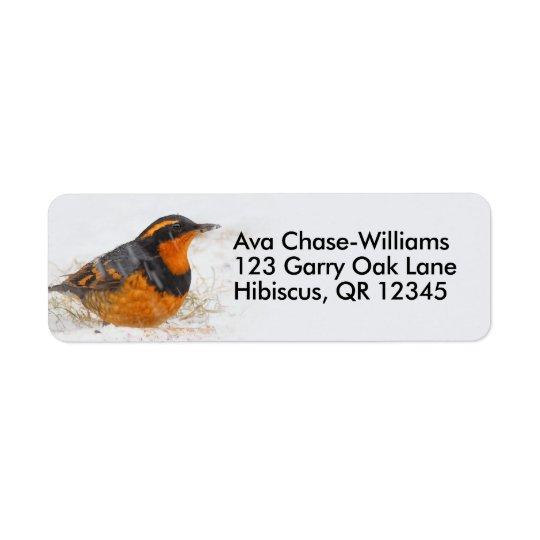 Beautiful Varied Thrush on a Snowy Winter's Day Return Address Label