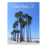 Beautiful Venice Beach Postcard!