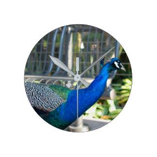 Beautiful Vibrant Peacock Clock