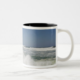 Beautiful view of beach against clear sky coffee mugs