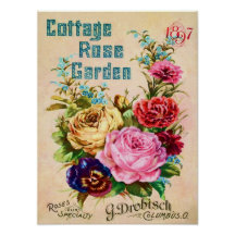 Beautiful Vintage Flower Catalog Advertisement Poster