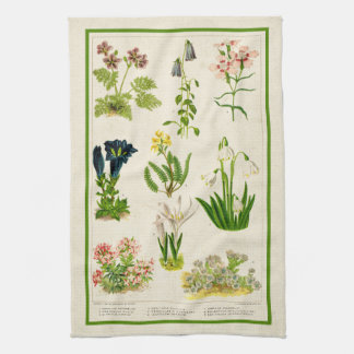 Beautiful Vintage Inspired Color Botanical Floral Tea Towel
