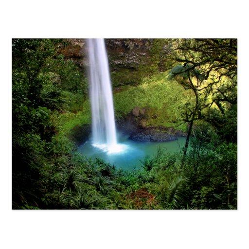 Beautiful Water Fall Postcard