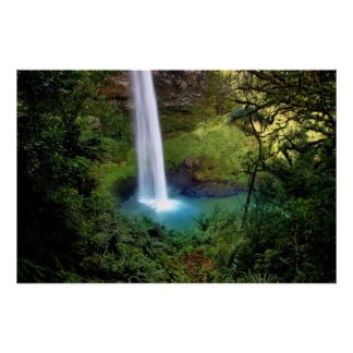 Beautiful Water Fall Poster