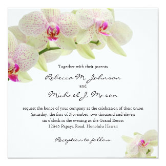 Beautiful White and Hot Pink Orchids 13 Cm X 13 Cm Square Invitation Card