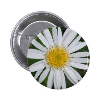 Beautiful White and Yellow Flower Design 6 Cm Round Badge