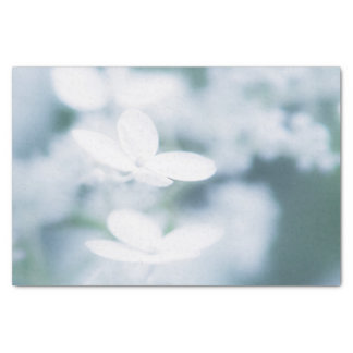 Beautiful white blossoms tissue paper