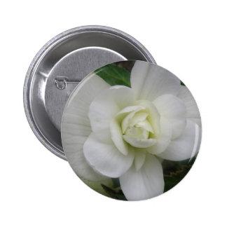 Beautiful White Carnation Button
