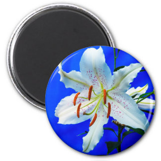 Beautiful white lily flower 6 cm round magnet