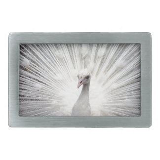 Beautiful white peacock belt buckles