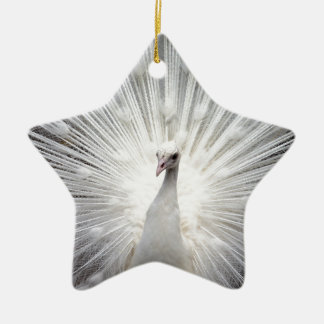 Beautiful white peacock christmas ornament