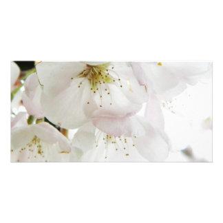 Beautiful White Photo Greeting Card