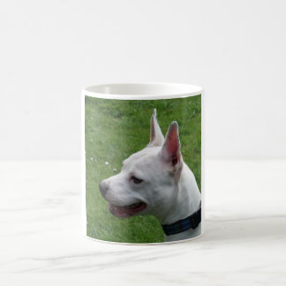 Beautiful White Staffordshire Bull Terrier Coffee Mug