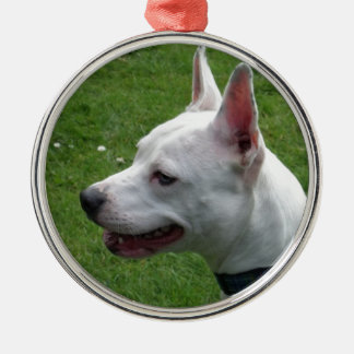 Beautiful White Staffordshire Bull Terrier Silver-Colored Round Decoration