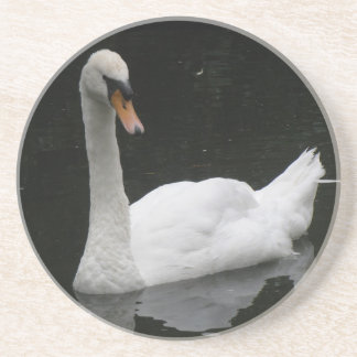 Beautiful White Swan Coasters