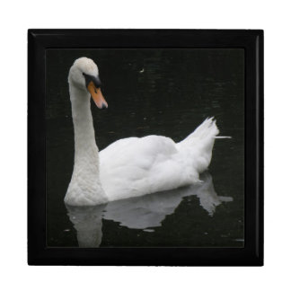 Beautiful White Swan Gift Box