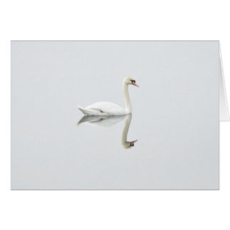 Beautiful white swan in water mirror image card