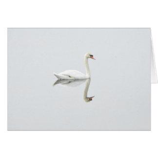 Beautiful white swan in water mirror image greeting card