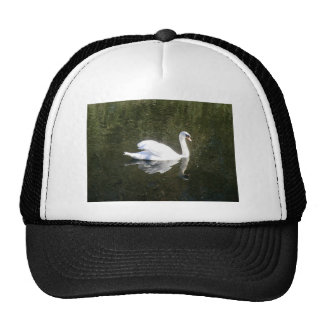 Beautiful White Swan Reflecting On The River Cap