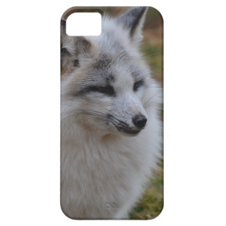 Beautiful White Swift Fox Case For The iPhone 5